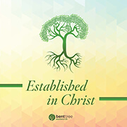 Established in Christ established in christ, book, disciple, small group